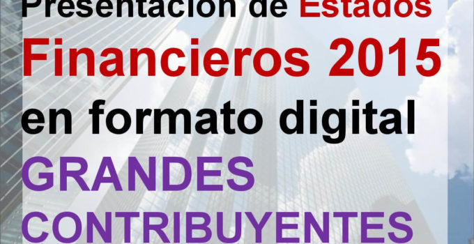estados financieros grandes contribuyentes, estados financieros en formato digital