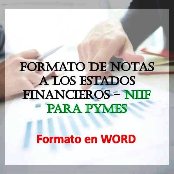 notas explicativas a los estados financieros