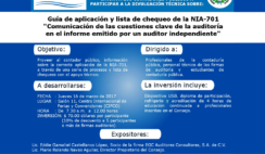 seminario cvpcpa, aplicacion nia 701, norma internacional de auditoria referente al dictamen de auditoria